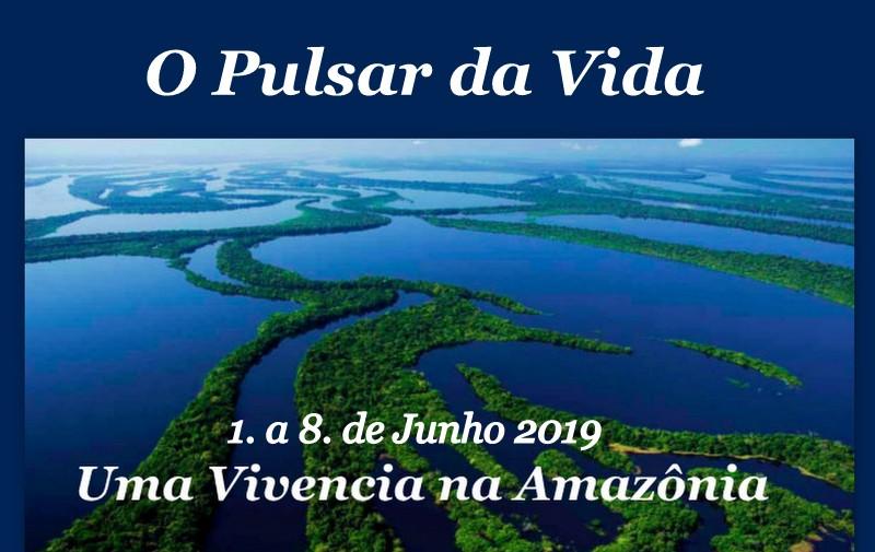 Amazonia8