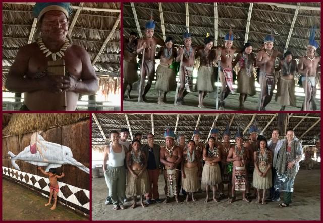 Amazonia 20194